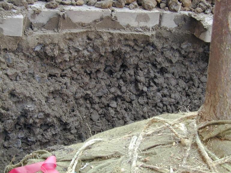 Closeup CU Soil after installation