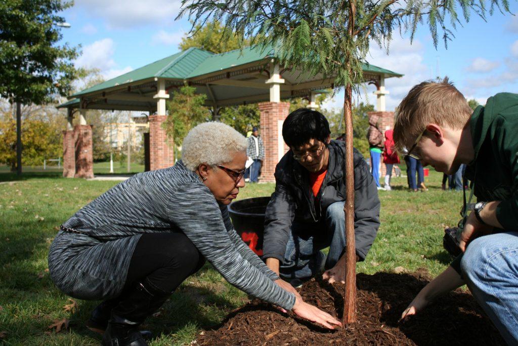 Plant MOre Trees Missouri