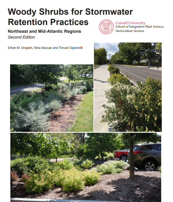 Woody Shrubs for Stormwater Retention udpated