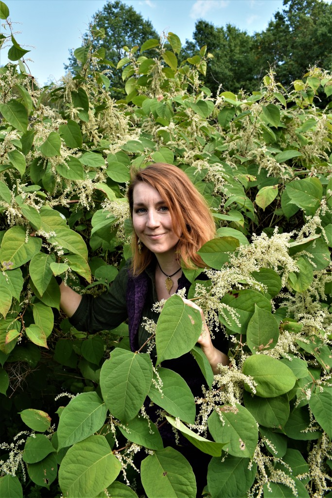 Laura with Knotweed