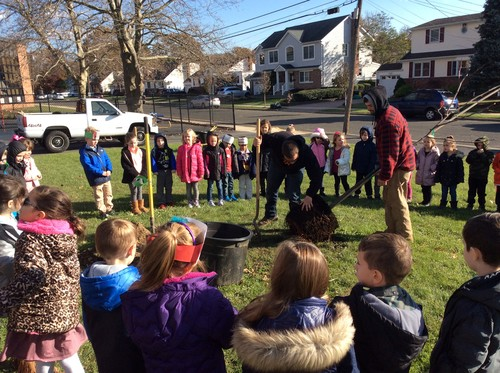 Tree planting lockhart elementary ALB reforestation team